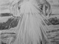 portret narysowany ołówkiem 29